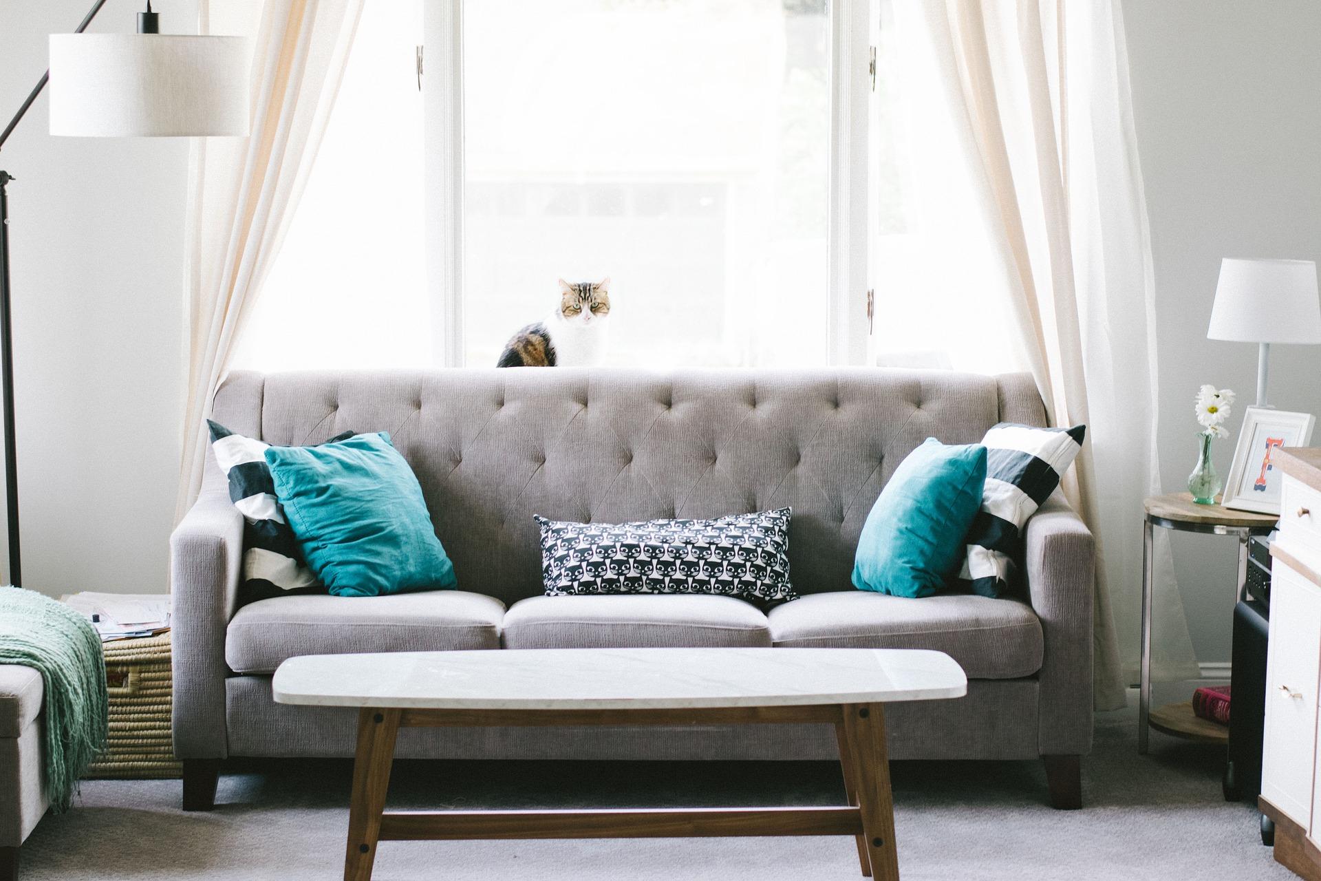Oživení interiéru nemusí být drahé