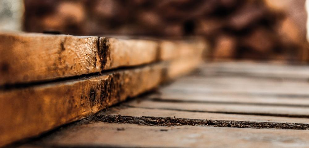 Dokážeme rozpoznat všechny výrobky ze dřeva, nebo nás dokáže obalamutit?