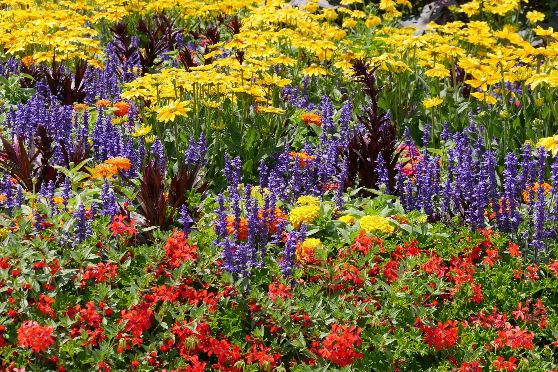 Postarají se o květinou výzdobu, sad i zahradu