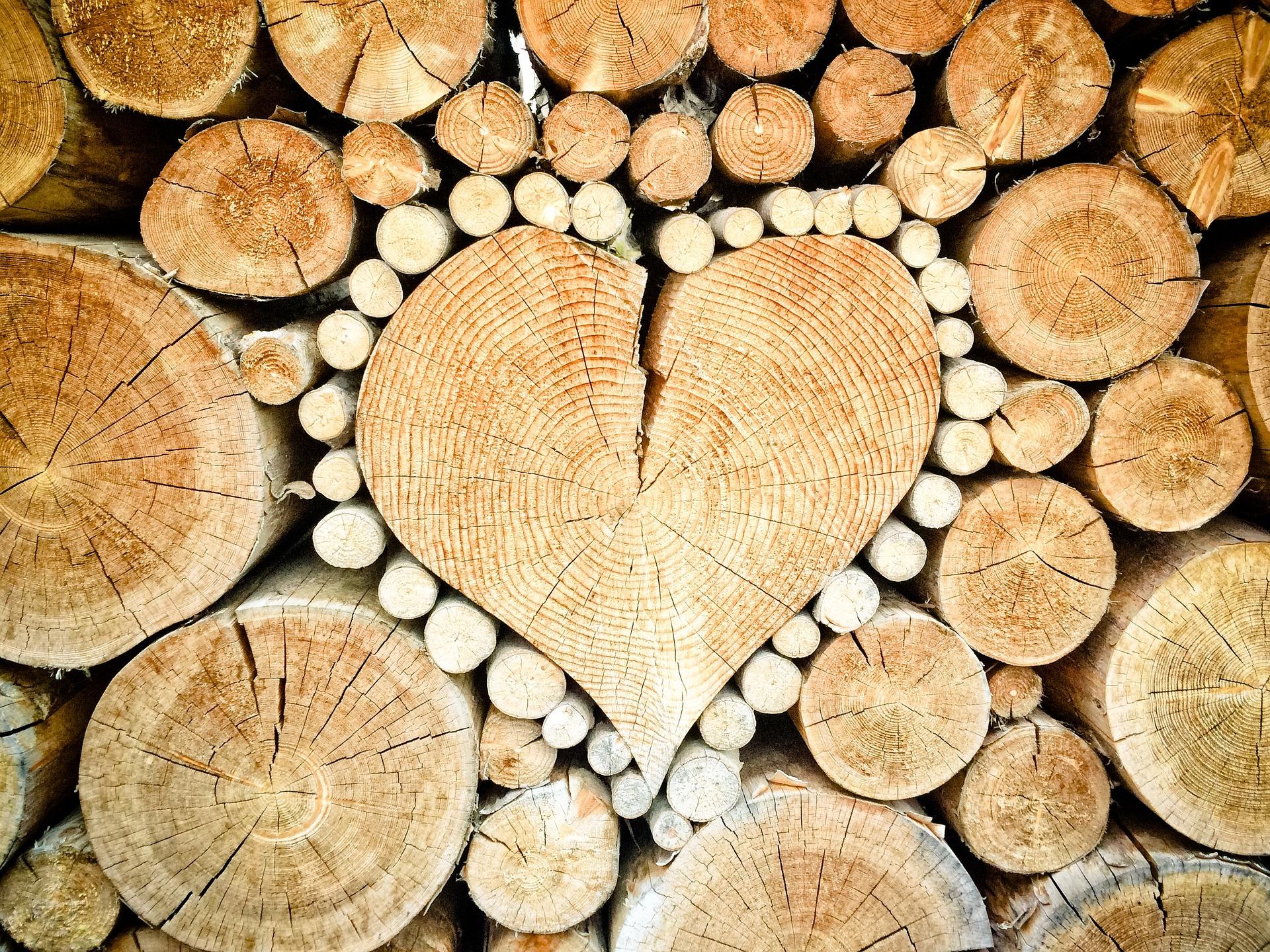 Výrobky ze dřeva, které nás překvapí