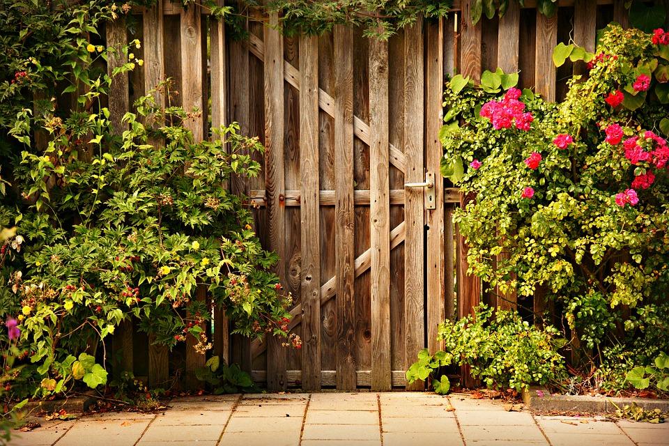 Jak se postarat o plot před zimou
