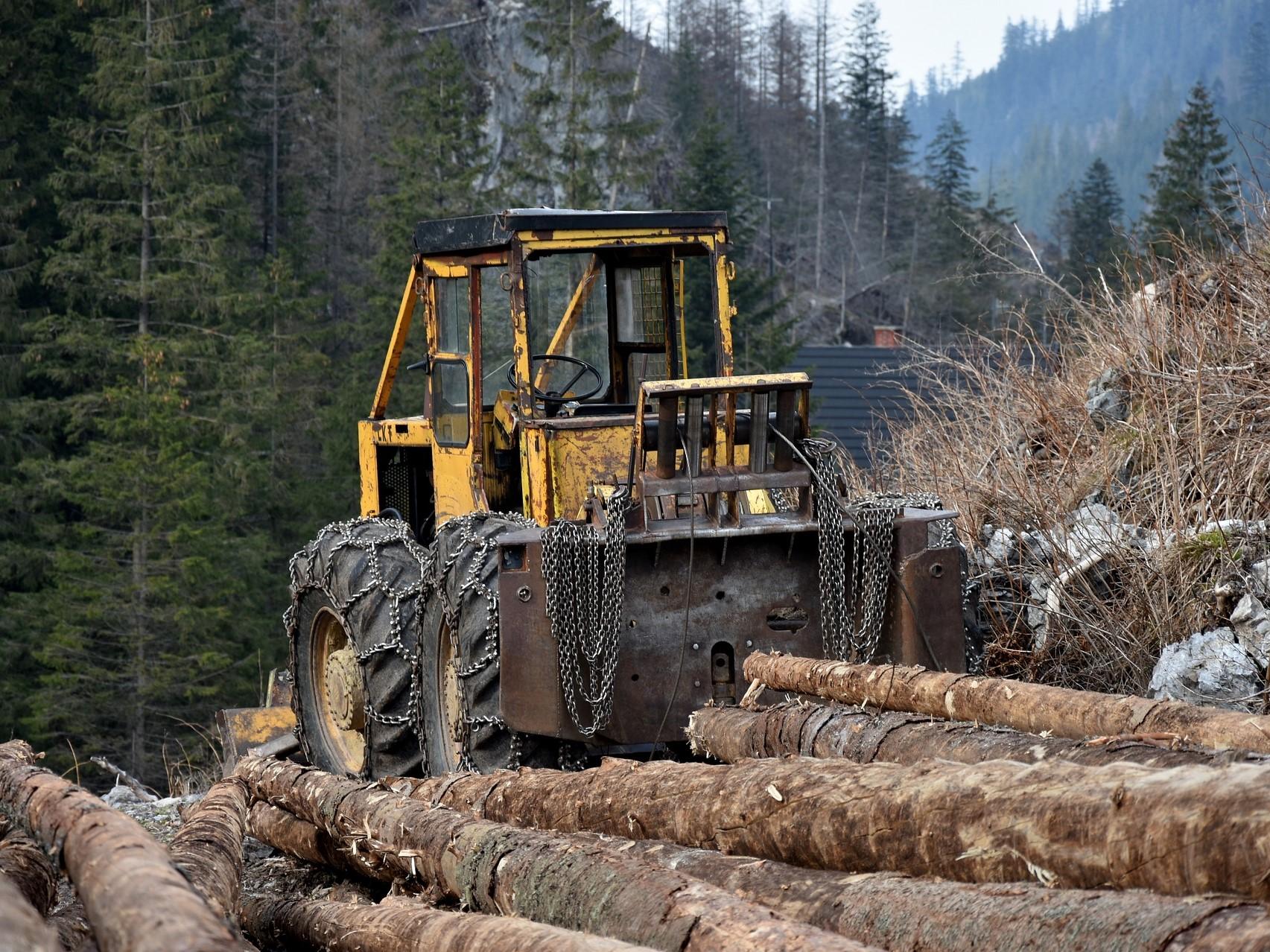 Které stroje se hodí do lesa, a které pomůžou i na polích?