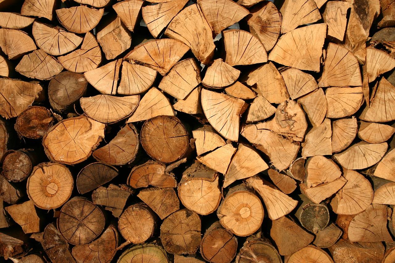Podle čeho vybrat štípané palivové dřevo?