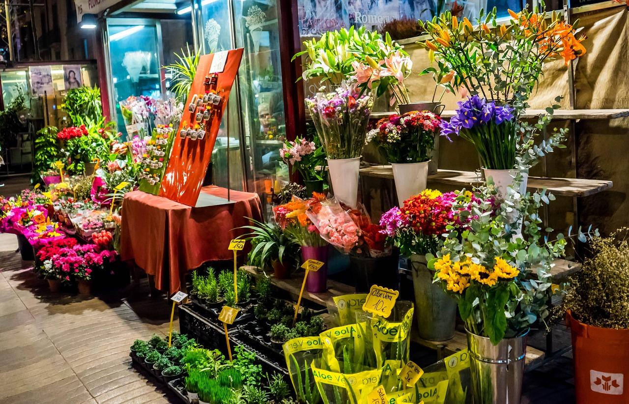 Pokojové rostliny jsou nepostradatelným doplňkem každého bydlení